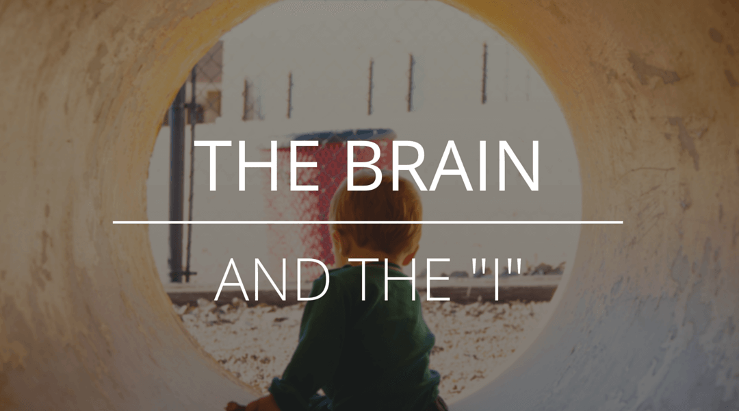 """The Brain and the """"I"""""""